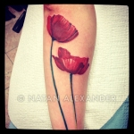 Arm showing tattoo of two bright red poppies in color ink by Natan Alexander