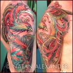Arm showing tattoo of colorful phoenix with open wings and feathers everywhere in color ink by Natan Alexander.
